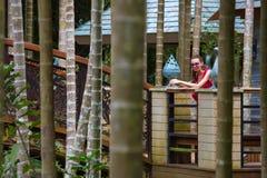 Περίπατος στο τροπικό Forest Park παραδείσου κόλπων Yalong, Hainan, πηγούνι Στοκ εικόνα με δικαίωμα ελεύθερης χρήσης
