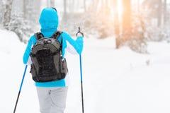 Περίπατος το χειμώνα, ο χιονώδης δασικός υγιής τρόπος ζωής Στοκ φωτογραφία με δικαίωμα ελεύθερης χρήσης