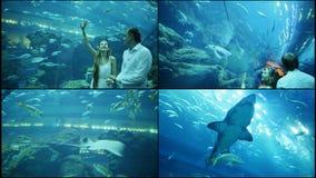 Περίπατος τύπων και κοριτσιών σε ένα υποβρύχιο ενυδρείο απόθεμα βίντεο