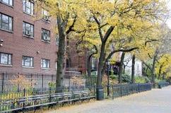 Περίπατος υψών του Μπρούκλιν Στοκ εικόνες με δικαίωμα ελεύθερης χρήσης