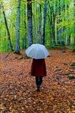 Περίπατος φθινοπώρου Στοκ Εικόνα