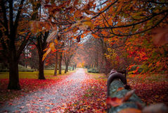 Περίπατος φθινοπώρου Στοκ Φωτογραφίες