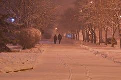 Περίπατος χειμερινού βραδιού κατά μήκος του πάρκου Στοκ φωτογραφίες με δικαίωμα ελεύθερης χρήσης