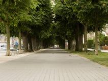 περίπατος Στοκ εικόνες με δικαίωμα ελεύθερης χρήσης