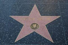 περίπατος stallone φήμης hollywood sylvester στοκ εικόνες