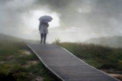 Περίπατος Taupo Νέα Ζηλανδία της Misty Στοκ φωτογραφία με δικαίωμα ελεύθερης χρήσης