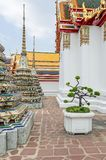 Περίπτερα και chedis Phra Chedi Rai σε έναν βουδιστικό ναό σύνθετο Wat Pho στη Μπανγκόκ στοκ εικόνες