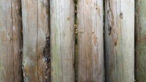 περίφραγμα Στοκ Φωτογραφία