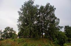 Περίφραξη των αγροτικών νεκροταφείων το καλοκαίρι Στοκ εικόνα με δικαίωμα ελεύθερης χρήσης