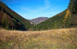 Περίχωρα Vrchpodziar στις τρύπες Janosik στο χωριό Terchova στοκ φωτογραφίες