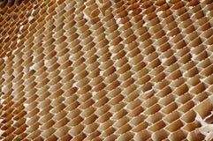 Περίληψη κυττάρων κυψελωτού χαρτονιού Στοκ φωτογραφίες με δικαίωμα ελεύθερης χρήσης