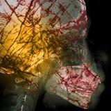 Περίληψη παθογόνων με το υπόβαθρο των ακτίνων X ταινιών στη διπλή έκθεση Στοκ Εικόνες