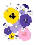 Περίληψη pansies Στοκ Εικόνες