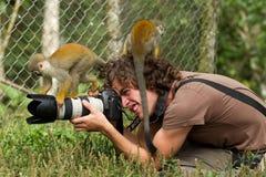 Περιέργεια στοκ φωτογραφίες με δικαίωμα ελεύθερης χρήσης