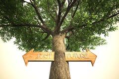 Περιβάλλον μετά από το μελλοντικό σημάδι δέντρων Στοκ εικόνες με δικαίωμα ελεύθερης χρήσης