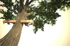 Περιβάλλον μετά από το μελλοντικό σημάδι δέντρων Στοκ εικόνα με δικαίωμα ελεύθερης χρήσης