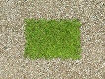 Περιβάλλον: πλαίσιο αμμοχάλικου και πράσινο μπάλωμα χλόης Στοκ φωτογραφίες με δικαίωμα ελεύθερης χρήσης