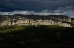 Περιβάλλον της Βραζιλίας Στοκ Φωτογραφίες
