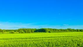 Περιβαλλοντική συντήρηση και πράσινη ενέργεια Στοκ Εικόνα