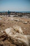 Περιβαλλοντική ρύπανση στην παραλία στην Ταϊλάνδη Στοκ Φωτογραφίες