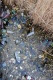 Περιβαλλοντικό πρόβλημα, απορρίματα Μόλυνση με τα συντρίμμια και τη PL Στοκ Φωτογραφίες