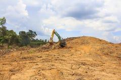 Περιβαλλοντικό πρόβλημα αποδάσωσης στοκ φωτογραφία