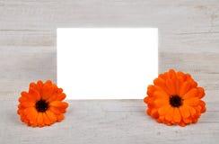 Περιγράψιμη κάρτα Στοκ εικόνες με δικαίωμα ελεύθερης χρήσης
