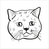 Περιγραμμένο επικεφαλής σχέδιο γατών Σκωτσέζικη ευθεία απεικόνιση γατών απεικόνιση αποθεμάτων