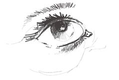 Περιγραμματικά θηλυκά μάτια Στοκ Εικόνες