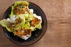 Περικαλύμματα μαρουλιού με το κοτόπουλο, το καρότο, τα φυστίκια και το scallion Γεμισμένα φύλλα μαρουλιού παγόβουνων με το κοτόπο στοκ εικόνες