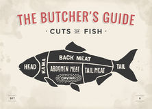Περικοπή του συνόλου κρέατος Διάγραμμα και σχέδιο χασάπηδων αφισών - ψάρια Εκλεκτής ποιότητας τυπογραφικός hand-drawn Στοκ φωτογραφία με δικαίωμα ελεύθερης χρήσης