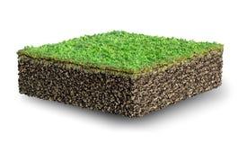 Περικοπή του χώματος με την τρισδιάστατη απεικόνιση χλόης ελεύθερη απεικόνιση δικαιώματος