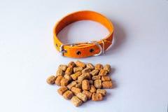 Περιλαίμιο της Pet και τροφή φωτογραφικών διαφανειών με ένα γκρίζο υπόβαθρο στοκ εικόνα