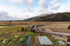 Περιοχή καλλιέργειας στο Κιότο Ιαπωνία στοκ εικόνες