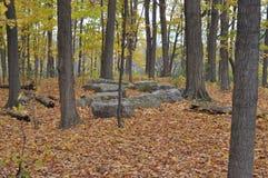 Περιοχή συντήρησης καρστ Eramosa - 26 Οκτωβρίου 2014 Στοκ Εικόνες