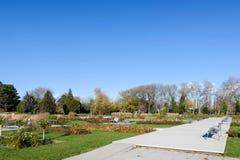 Περιοχή χαλάρωσης στο πάρκο Δούναβη στην οικονομική περιοχή Βιέννη Στοκ Φωτογραφία