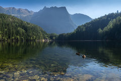 Περιοχή Achstà ¼ προστασίας Andscape rze Η λίμνη Piburger βλέπει και όρη στο υπόβαθρο Παλαιότερες κονσέρβες φύσης του Tirol Όρη O Στοκ εικόνα με δικαίωμα ελεύθερης χρήσης