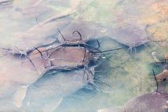 περιοχή animist στη Μπουρκίνα Φάσο Στοκ Εικόνες