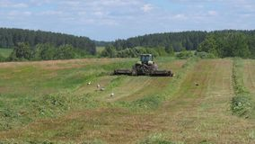 Περιοχή Mogilev, της Λευκορωσίας - 24 Ιουνίου 2017: Ένα τρακτέρ κόβει τη χλόη, από τη μύγα πελαργών απόθεμα βίντεο