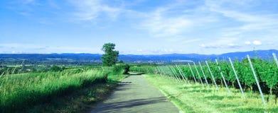 Περιοχή Schwarzwald, της Γερμανίας Στοκ Εικόνα
