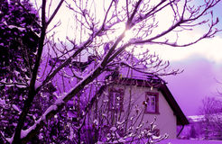 Περιοχή Schwarzwald, Freiburg Στοκ φωτογραφίες με δικαίωμα ελεύθερης χρήσης