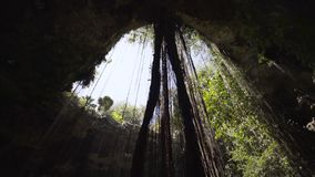 Περιπέτεια σπηλιών Cenote στο tulum απόθεμα βίντεο