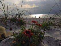 Περιπέτεια στην ηλιόλουστη άμμο Στοκ εικόνες με δικαίωμα ελεύθερης χρήσης