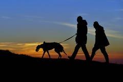 Περιπατητές σκυλιών στο ηλιοβασίλεμα Στοκ εικόνες με δικαίωμα ελεύθερης χρήσης
