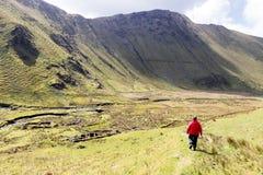 Περιπατητής στο φυσικό τοπίο στοκ εικόνες με δικαίωμα ελεύθερης χρήσης