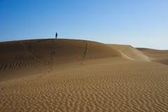 Περιπλανηθείτε arround και που χάνεται στους αμμώδεις αμμόλοφους στην έρημο Στοκ φωτογραφία με δικαίωμα ελεύθερης χρήσης