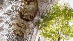 Περιστέρια και δέντρα εγγράφου στην εκκλησία Στοκ Φωτογραφίες