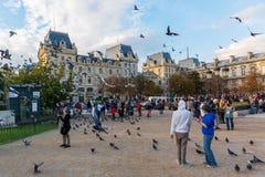 Περιστέρια και τουρίστες μπροστά από τη Notre Dame στο Παρίσι Στοκ εικόνες με δικαίωμα ελεύθερης χρήσης