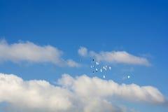 Περιστέρια που πετούν, μπλε ουρανός, άσπρα σύννεφα p7 Στοκ φωτογραφία με δικαίωμα ελεύθερης χρήσης