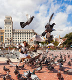 Περιστέρια στην πλατεία της Καταλωνίας στη Βαρκελώνη Στοκ φωτογραφίες με δικαίωμα ελεύθερης χρήσης